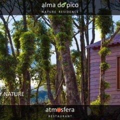 Отель Alma do Pico Португалия, Мадалена - отзывы, цены и фото номеров - забронировать отель Alma do Pico онлайн фото 9