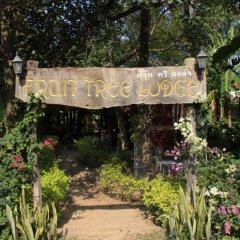 Отель Fruit Tree Lodge Ланта помещение для мероприятий