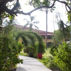 Kairaba Hotel in Kololi, Gambia from 221$, photos, reviews - zenhotels.com photo 6