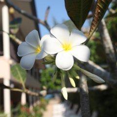 Отель Naiyang Seaview Place фото 11