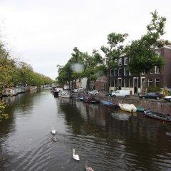 Отель Stadhouderskade Apartment Нидерланды, Амстердам - отзывы, цены и фото номеров - забронировать отель Stadhouderskade Apartment онлайн приотельная территория