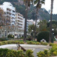 Отель Apartamentos Blanes Испания, Бланес - отзывы, цены и фото номеров - забронировать отель Apartamentos Blanes онлайн фото 2