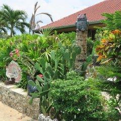 Отель Rock Mini Resort фото 2