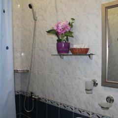 Гостиница Сергий Стандартный номер с различными типами кроватей фото 4
