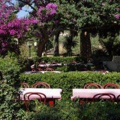 Отель Fonda Las Palmeras