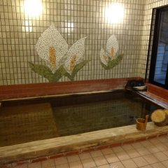 Отель Mizubasho no Yado Higashi Нумата бассейн