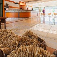 Отель DAS Club Hotel Sunny Beach Болгария, Солнечный берег - отзывы, цены и фото номеров - забронировать отель DAS Club Hotel Sunny Beach онлайн гостиничный бар