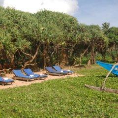 Отель Wunderbar Beach Club Hotel Шри-Ланка, Бентота - отзывы, цены и фото номеров - забронировать отель Wunderbar Beach Club Hotel онлайн фото 6
