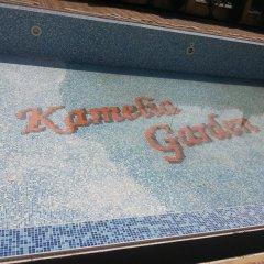Отель Kamelia Garden Солнечный берег бассейн