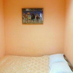 Мини-отель Лира Стандартный номер с различными типами кроватей фото 5