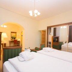 Spa Hotel Anglicky Dvur 3* Стандартный номер с различными типами кроватей фото 2