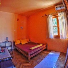 Апартаменты Apartments Nikčević комната для гостей фото 2