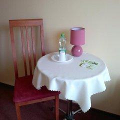 Отель Bluszcz 2* Стандартный номер с различными типами кроватей фото 4