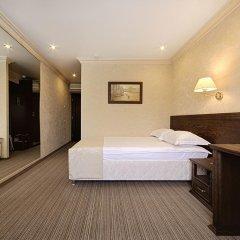 Гостиница «Барнаул» 3* Номер Бизнес с различными типами кроватей
