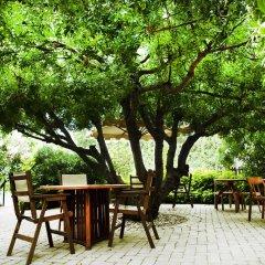 Отель Rastoni Греция, Эгина - отзывы, цены и фото номеров - забронировать отель Rastoni онлайн фото 3