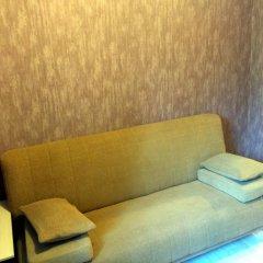 Мини-Отель Друзья Стандартный номер с двуспальной кроватью фото 3