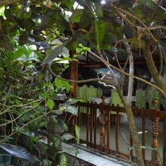 Отель Green Valley Holiday Inn Шри-Ланка, Бандаравела - отзывы, цены и фото номеров - забронировать отель Green Valley Holiday Inn онлайн детские мероприятия