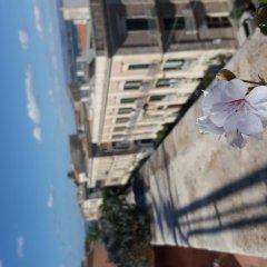 Отель Terra&Mare B&B Сиракуза фото 12