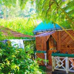 Отель Crystal Mounts Шри-Ланка, Нувара-Элия - отзывы, цены и фото номеров - забронировать отель Crystal Mounts онлайн бассейн фото 2