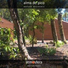 Отель Alma do Pico Португалия, Мадалена - отзывы, цены и фото номеров - забронировать отель Alma do Pico онлайн фото 8