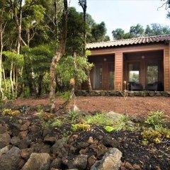 Отель Alma do Pico Португалия, Мадалена - отзывы, цены и фото номеров - забронировать отель Alma do Pico онлайн фото 6