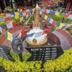 Отель Thamel Eco Resort Непал, Катманду - отзывы, цены и фото номеров - забронировать отель Thamel Eco Resort онлайн бассейн