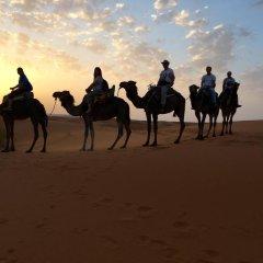 Отель Camel Bivouac Merzouga Марокко, Мерзуга - отзывы, цены и фото номеров - забронировать отель Camel Bivouac Merzouga онлайн спортивное сооружение