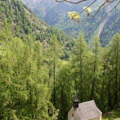 Natur Aktiv Hotel Rainhof Сеналес приотельная территория