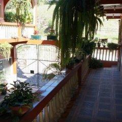 Отель Marjenny Гондурас, Копан-Руинас - отзывы, цены и фото номеров - забронировать отель Marjenny онлайн фото 10