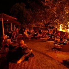 Отель Anatoli Греция, Эгина - отзывы, цены и фото номеров - забронировать отель Anatoli онлайн бассейн фото 2