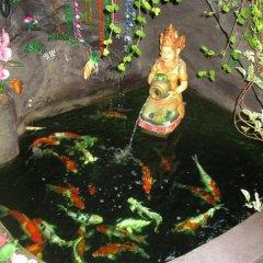 Отель Alamanda Accomodation фото 13