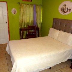 Halston Hotel 3* Стандартный номер с различными типами кроватей фото 4