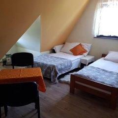 Отель Willa Carpe Diem Косцелиско комната для гостей