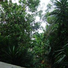 Отель The Garden House Порт Антонио фото 3