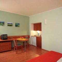 Отель Penzion Fan 3* Студия с двуспальной кроватью фото 14