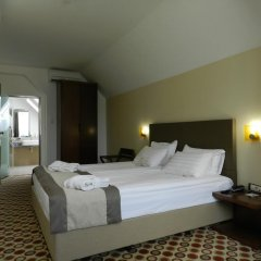 Central Hotel Sofia 4* Номер Комфорт разные типы кроватей фото 7