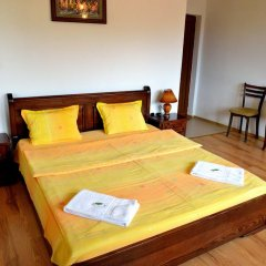 Отель Guest House Mavrudieva 2* Стандартный номер с двуспальной кроватью фото 4