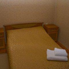 Гостиница Вилла Татьяна на Верхнеозёрной Стандартный номер с различными типами кроватей фото 11