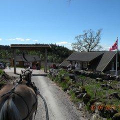 Отель Hagen Норвегия, Веннесла - отзывы, цены и фото номеров - забронировать отель Hagen онлайн фото 2