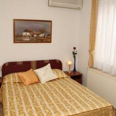 Hotel Vila Tina 3* Номер категории Эконом с различными типами кроватей фото 5