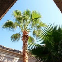 Отель Dar Al Kounouz Марокко, Марракеш - отзывы, цены и фото номеров - забронировать отель Dar Al Kounouz онлайн балкон