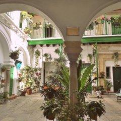 Отель Apartamentos Jerez Испания, Херес-де-ла-Фронтера - отзывы, цены и фото номеров - забронировать отель Apartamentos Jerez онлайн фото 6