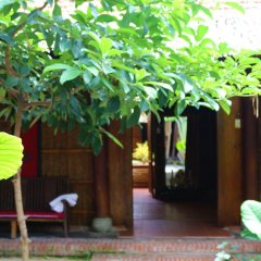 Отель Under the coconut tree фото 10