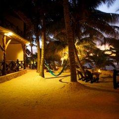 Отель Beachfront Hotel La Palapa - Adults Only Мексика, Остров Ольбокс - отзывы, цены и фото номеров - забронировать отель Beachfront Hotel La Palapa - Adults Only онлайн фото 11