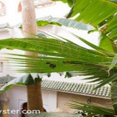 Отель Riad Maison-Arabo-Andalouse Марокко, Марракеш - отзывы, цены и фото номеров - забронировать отель Riad Maison-Arabo-Andalouse онлайн фото 7