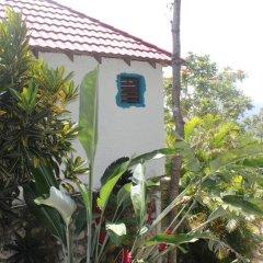 Germaican Hostel Бунгало Делюкс