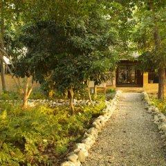 Отель Maruni Sanctuary by KGH Group Непал, Саураха - отзывы, цены и фото номеров - забронировать отель Maruni Sanctuary by KGH Group онлайн фото 6
