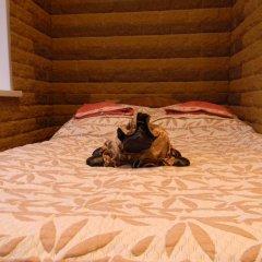 Гостиница Марсель Полулюкс с разными типами кроватей фото 7
