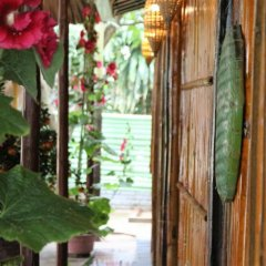 Отель Under the coconut tree Номер Делюкс с различными типами кроватей фото 5