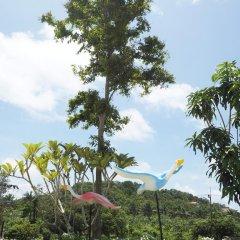 Отель Chomview Resort Ланта пляж